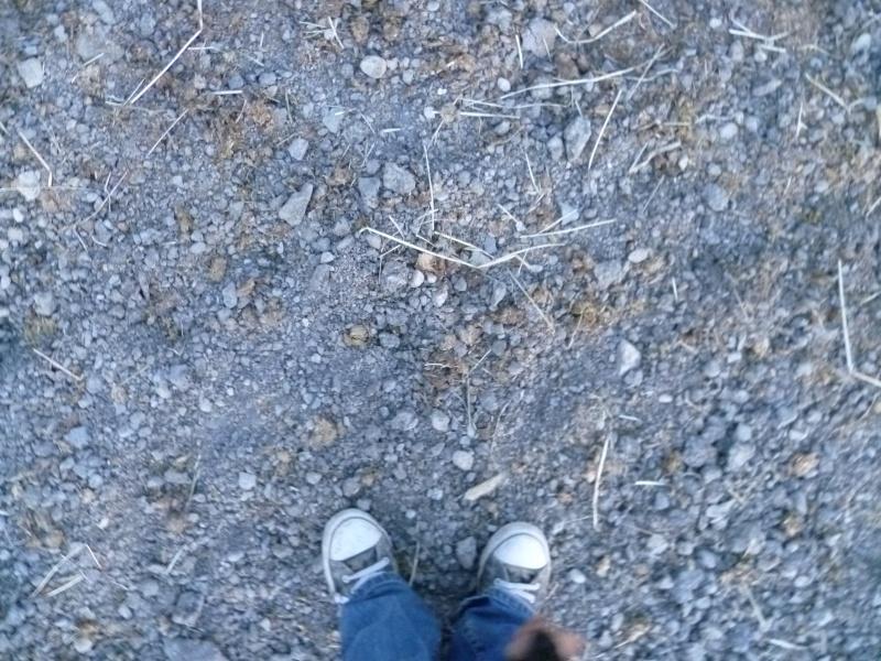 Les pieds-pieds a Tam-Tam^^photos P1010811