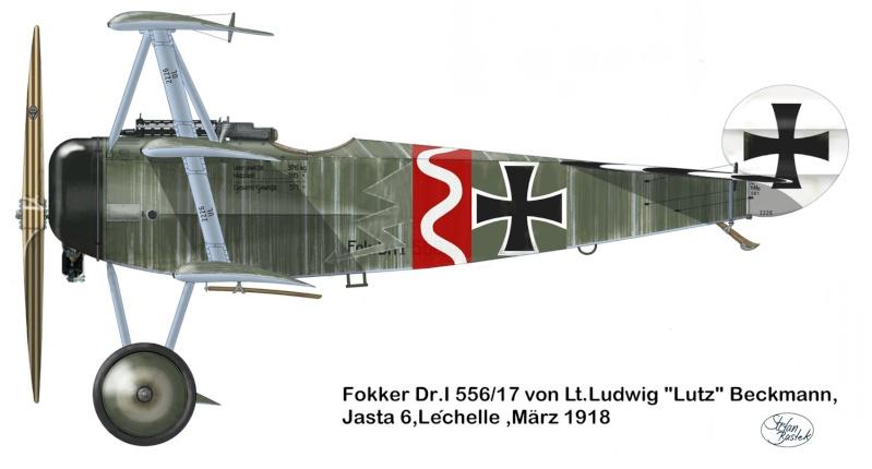 Fokker Dr.I 556/17 – Jasta 6 – Mars 1918 1/48 (+ dio) 59_2613
