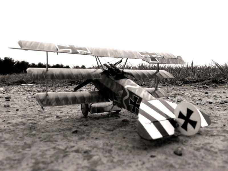 Fokker Dr.I 556/17 – Jasta 6 – Mars 1918 1/48 (+ dio) C00111
