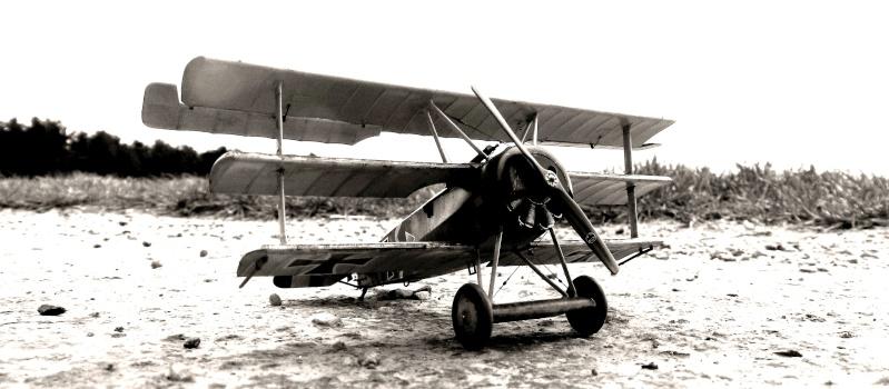 Fokker Dr.I 556/17 – Jasta 6 – Mars 1918 1/48 (+ dio) C00211