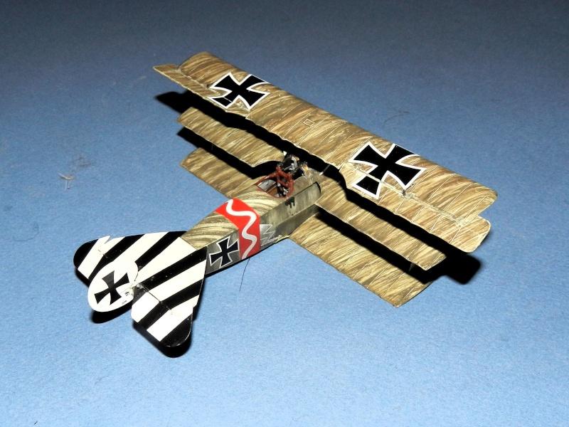 peinture brossée de Fokker Dr.I Dscn2837