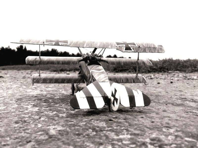 Fokker Dr.I 556/17 – Jasta 6 – Mars 1918 1/48 (+ dio) Dscn2911