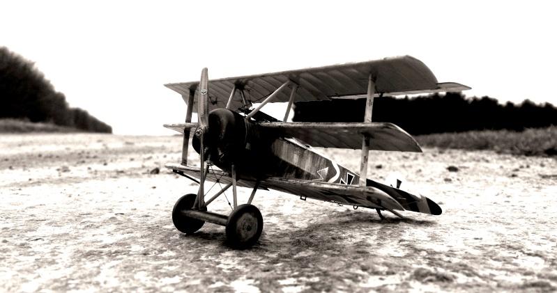 Fokker Dr.I 556/17 – Jasta 6 – Mars 1918 1/48 (+ dio) Dscn2913