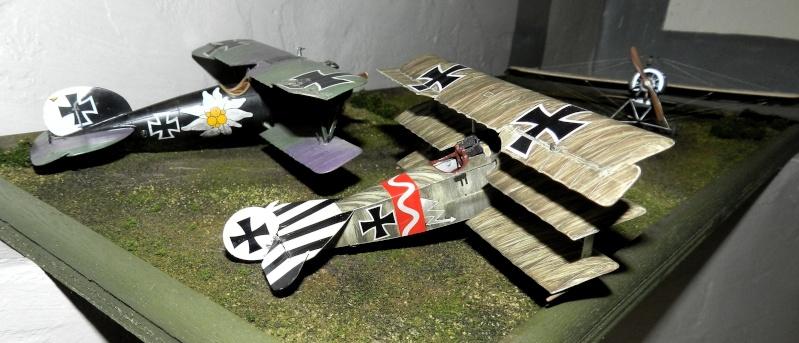Fokker Dr.I 556/17 – Jasta 6 – Mars 1918 1/48 (+ dio) Dscn2924