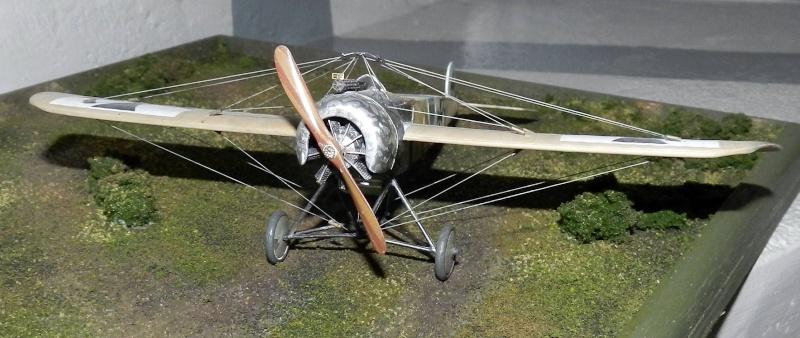 Fokker Dr.I 556/17 – Jasta 6 – Mars 1918 1/48 (+ dio) Dscn2925