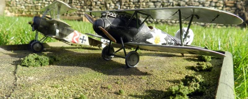 Fokker Dr.I 556/17 – Jasta 6 – Mars 1918 1/48 (+ dio) Dscn2929