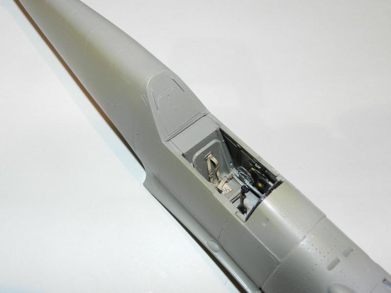 """Messerschmitt Bf 109 D """"Gelbe 1"""" I./3./JG 21 - Septembre 1939 - 1/32 - Page 4 Dscn3045"""