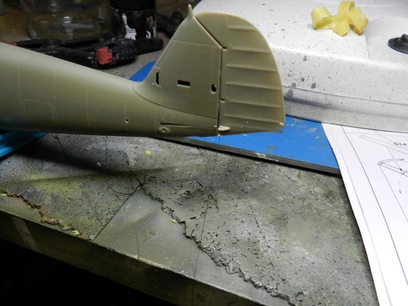 """Messerschmitt Bf 109 D """"Gelbe 1"""" I./3./JG 21 - Septembre 1939 - 1/32 - Page 4 Dscn3046"""