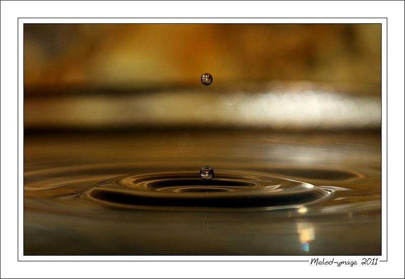 FIL ROUGE: Quelques gouttes d'eau pour un océan  - Page 15 2810
