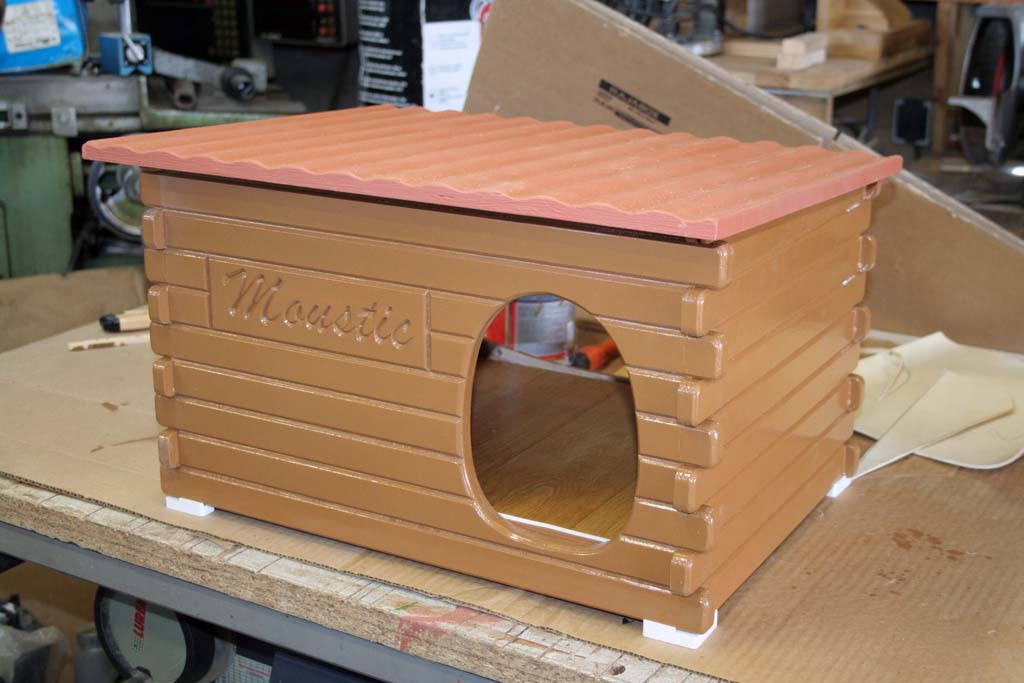 Une maison pour une petite chatte Mousti19