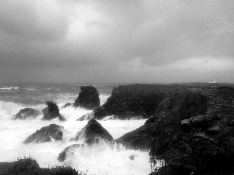 Belle-Ile-en-mer un 2 janvier: du vent dans mes rêves! Img_2013