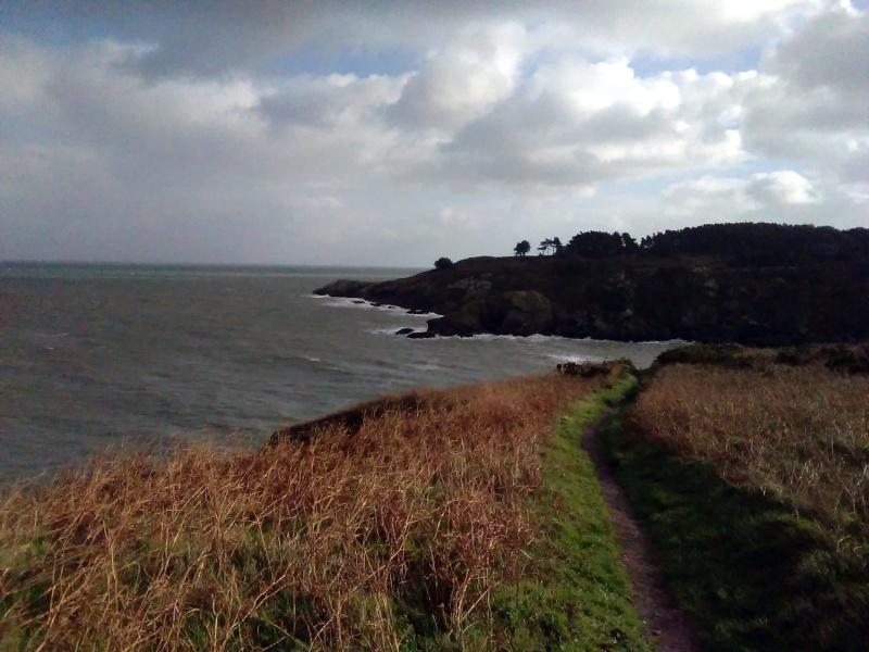 Belle-Ile-en-mer un 2 janvier: du vent dans mes rêves! Img_2015