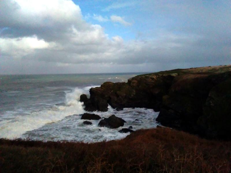 Belle-Ile-en-mer un 2 janvier: du vent dans mes rêves! Img_2022