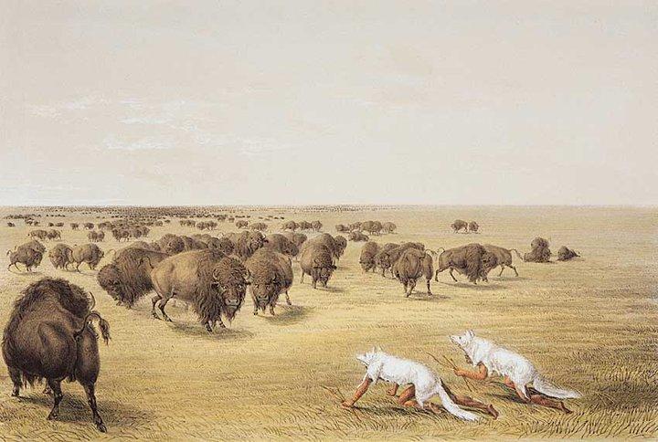 Ici tout sur les Amérindiens bijoux ,histoires ,liens ect...... 28255011