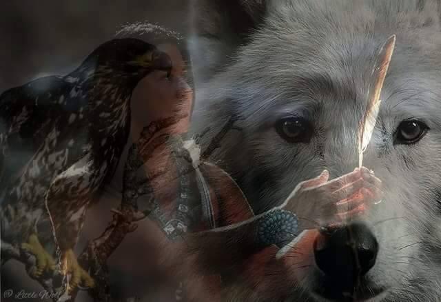 Ici tout sur les Amérindiens bijoux ,histoires ,liens ect...... - Page 3 55918210