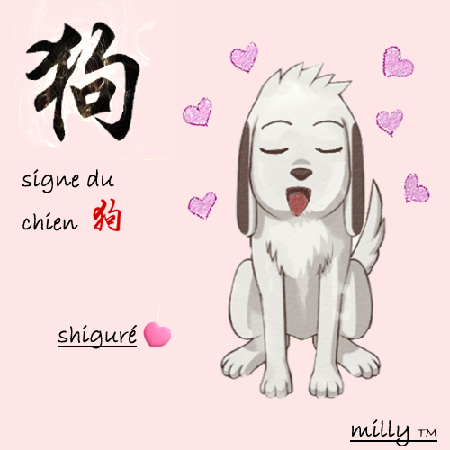 Grand concours signes chinois Signe_10