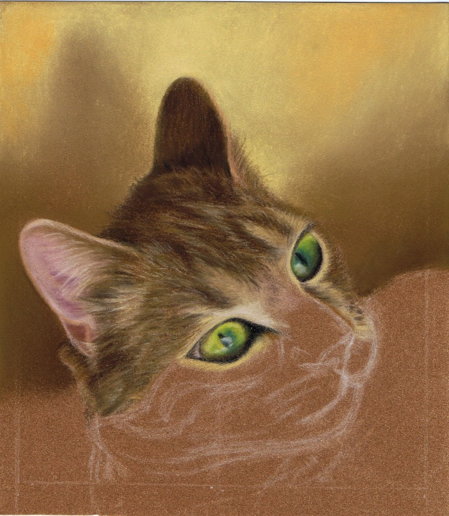 Portrait de chat Pas_a_11