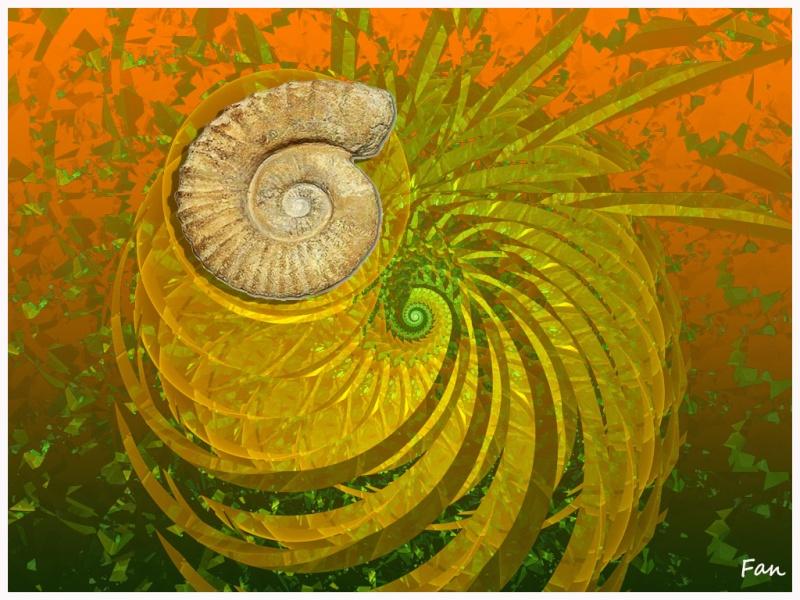 Les fractales et leur montage  en image Escarg10