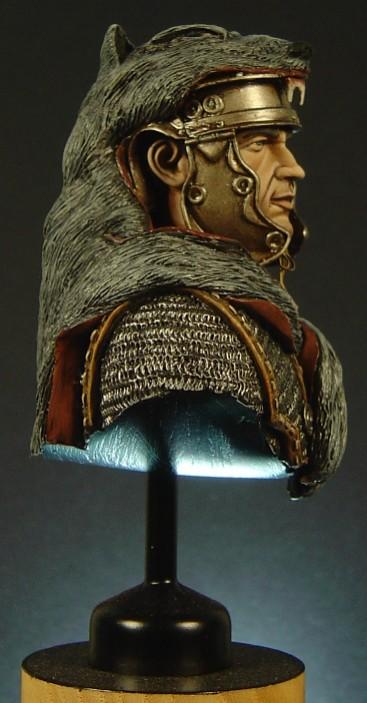 Roman Busts Pictu169