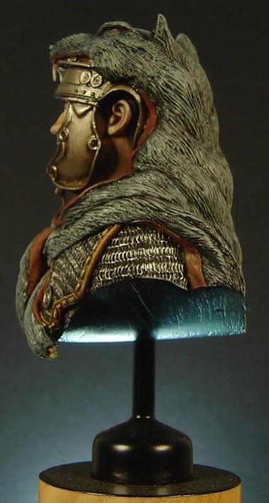 Roman Busts Pictu172