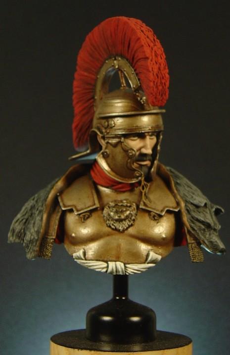 Roman Busts Pictu174