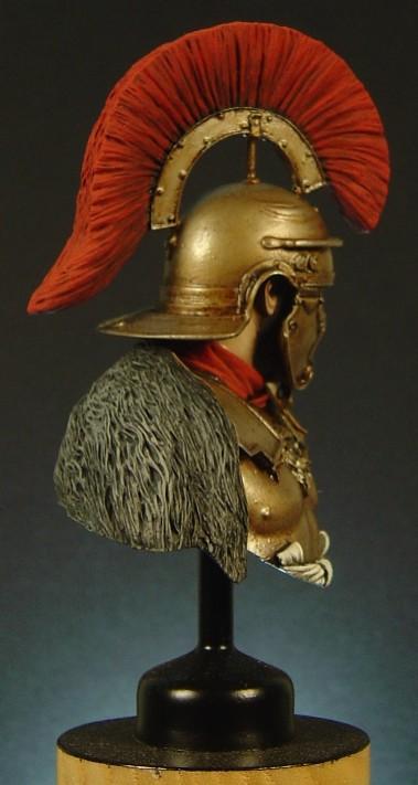 Roman Busts Pictu176