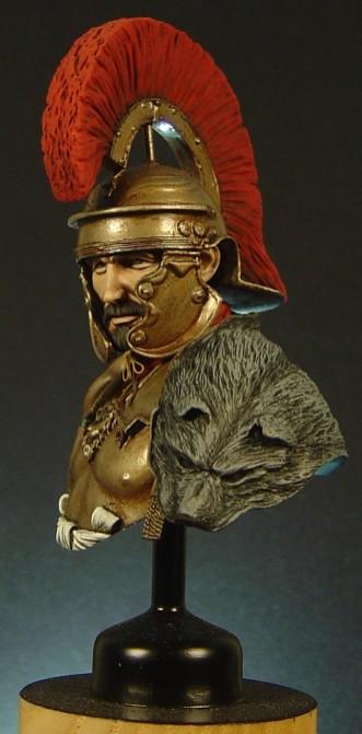 Roman Busts Pictu179