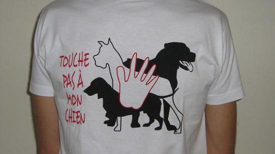 touche pas à mon chien 56240910