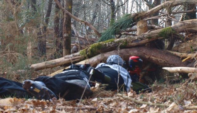 6 et 7 mars, rigolons dans les bois  Yann_a10