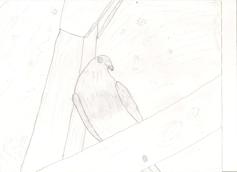 A drawing of mine! Grade_10