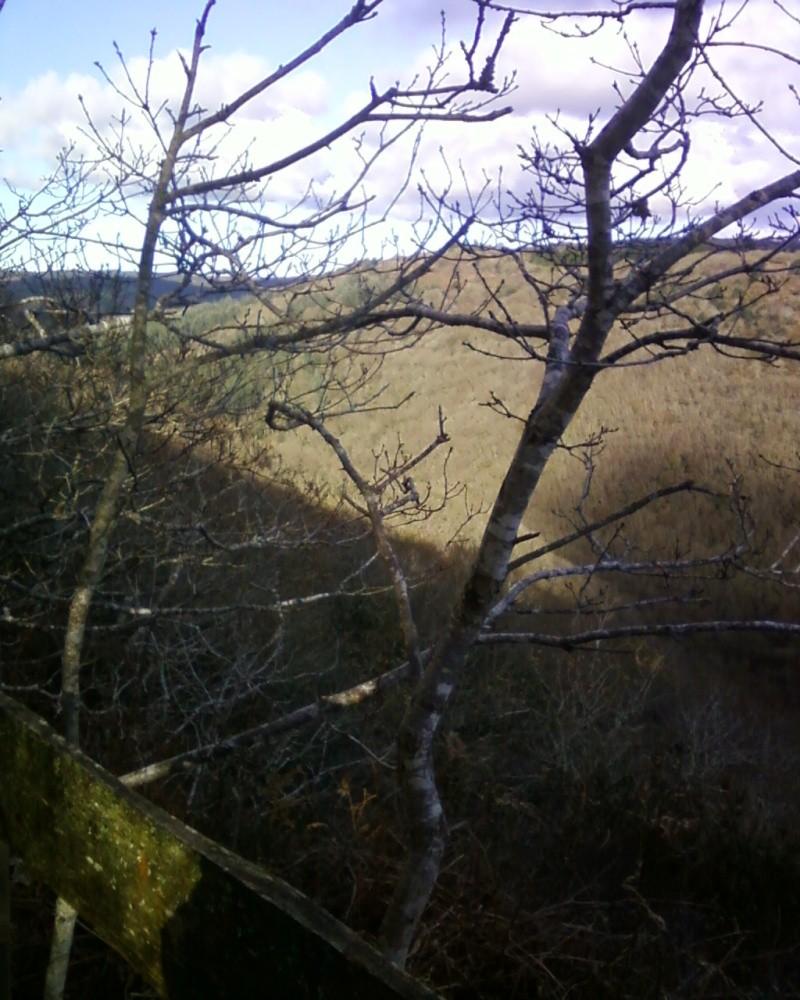 Balade en montagne Photos12