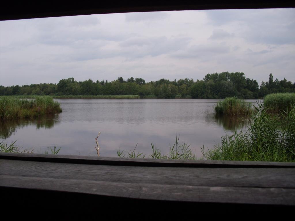 Wijers (Limburg) 9_vijv10