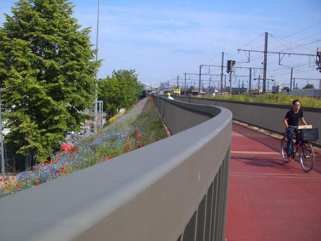 L025 Fietsweg Antwerpen - Mechelen (L25) ('fiets-o-strade' 2 - axe nord-sud) [sud] F01 - Page 5 Berche15