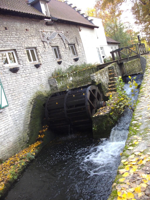 Woluwe (Vilvoorde-Sint Pieters Woluwe) Moulin10