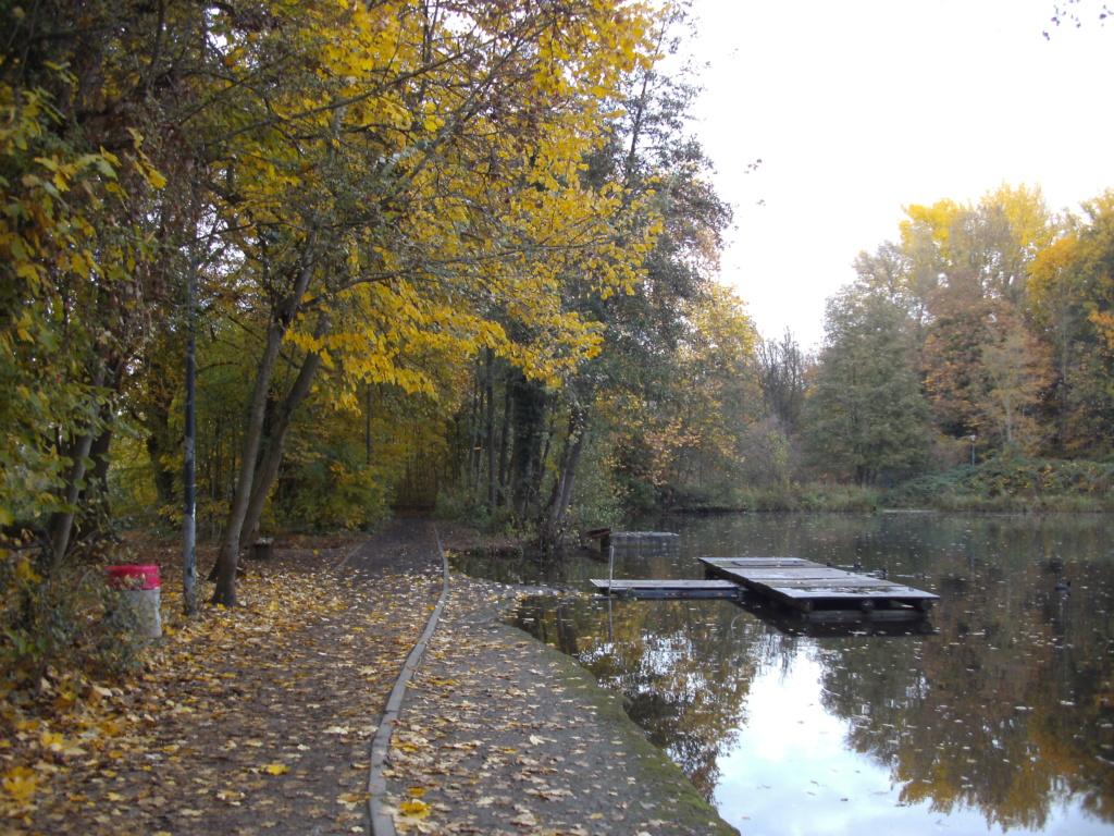 Woluwe (Vilvoorde-Sint Pieters Woluwe) Parc_d10