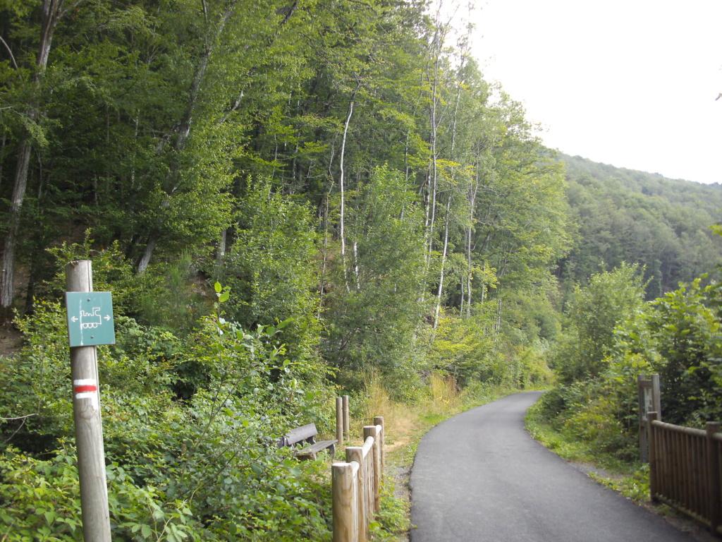 voie verte transsemoysienne - Voie Verte de la vallée de Semoy - Page 2 Pict2115