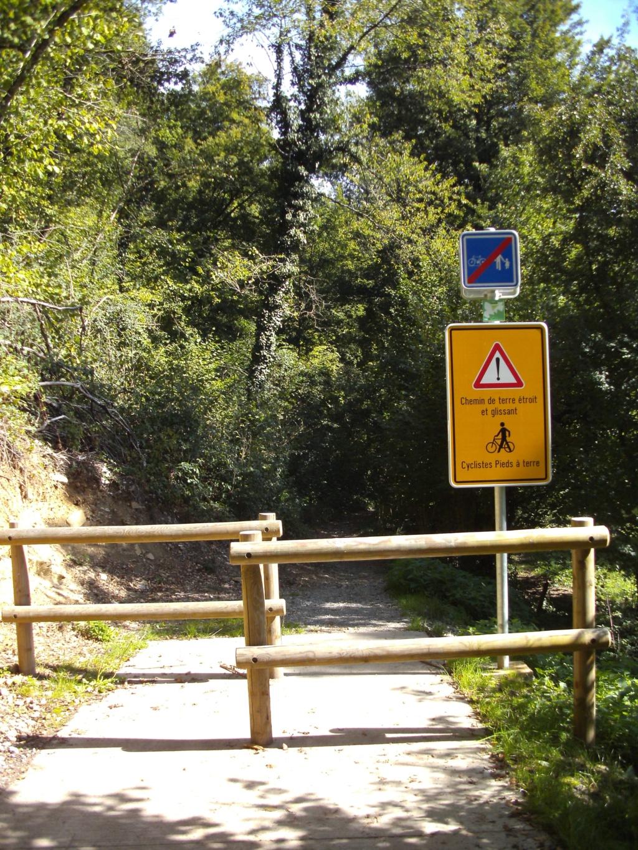 RAVeL 5 Ourthe Liege - Durbuy - Itinéraire N°7 - Sur la route des Ardennes - Page 5 Pict2424