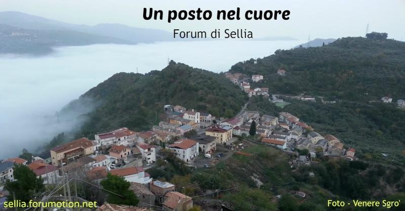 Sellia- Un posto nel cuore
