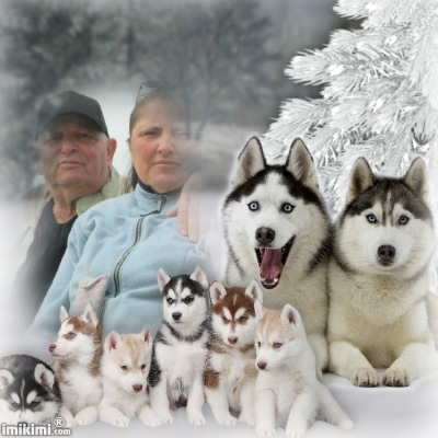 Montage de ma famille - Page 2 2zxda121