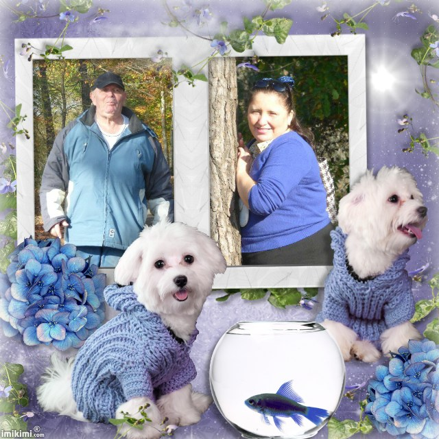 Montage de ma famille - Page 2 2zxda160