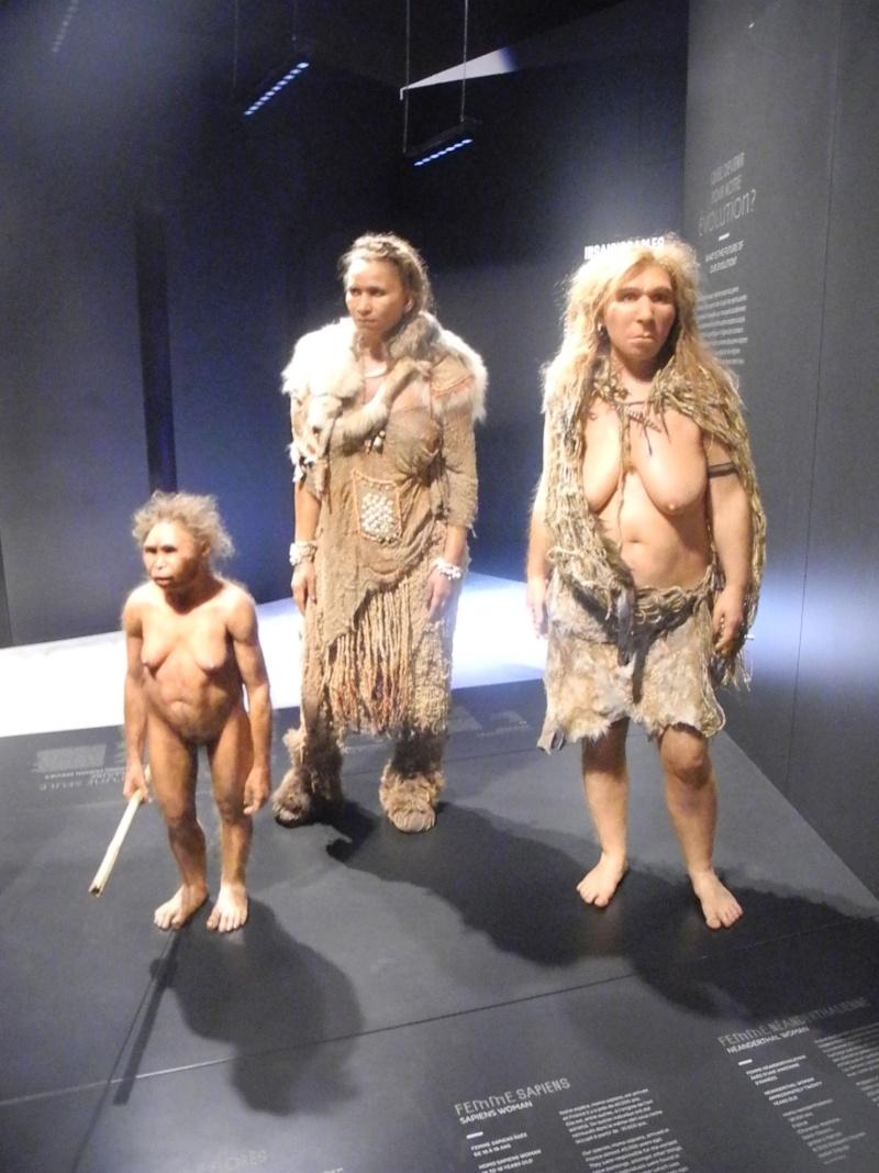 Musée des Confluences à Lyon Dscn1414