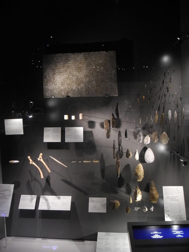 Musée des Confluences à Lyon Dscn1511
