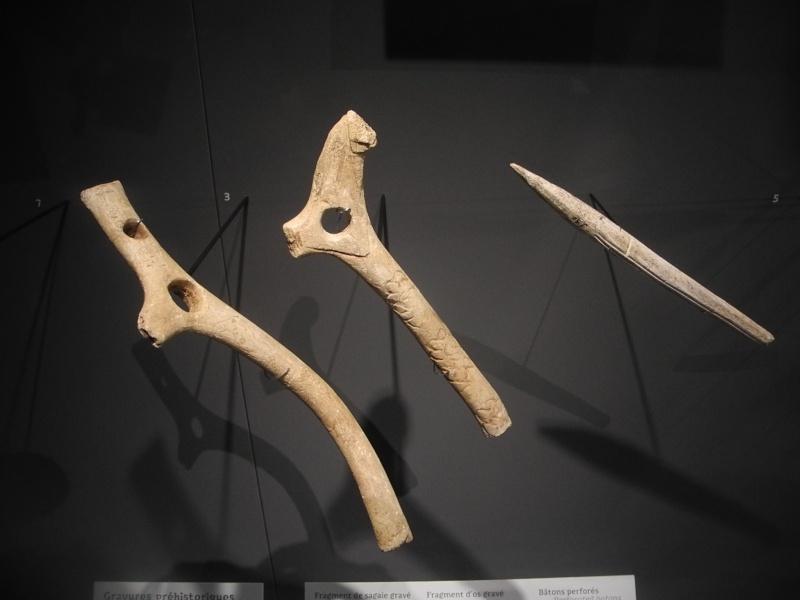 Musée des Confluences à Lyon Dscn1512