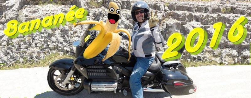 Bonne Année Banany11