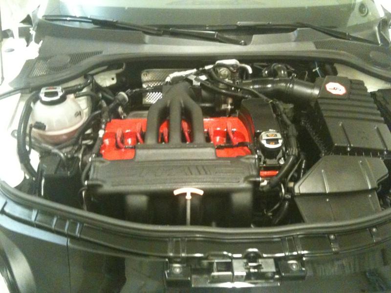 TT 3.2 V6 T de piopio - Page 5 Img_1310