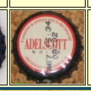 Adelscott Adelsc11