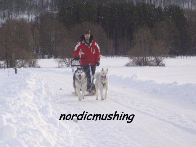 La photo des membres de taïga - Page 27 Nordic31