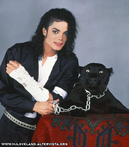 Michael e gli animali!! - Pagina 3 Fmj0812