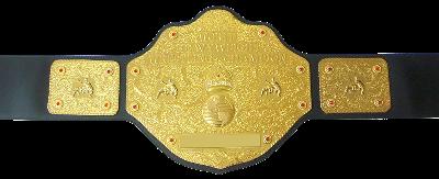 Champions de la FIP Whc10