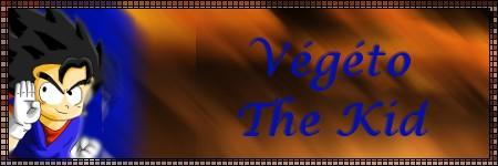 Le guide d'utilisation du forum voit le jour Vagato11
